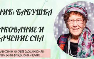 Сонник Бабушка (живая), к чему снится Бабушка (живая) во сне видеть