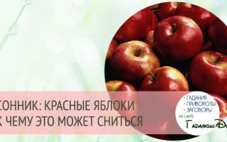 К чему снятся яблоки красные? ЭТО ХОРОШО! Толкование снов в соннике
