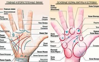 Хиромантия: обозначение линий на руке