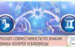 Близнецы и Козерог — совместимость знаков зодиака