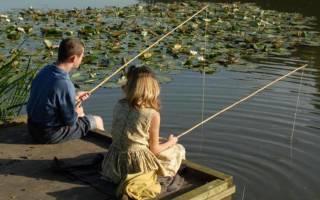 К чему снится ловить рыбу удочкой женщине: толкование по разным источникам, значение ловли рыбы для девушки