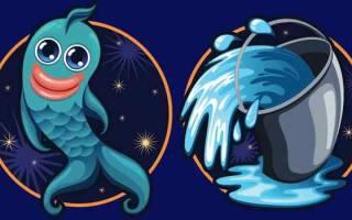 Совместимость рыбы и водолея: в любви, дружбе, постели
