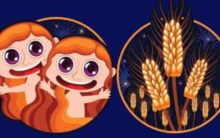 Мужчина-Дева и женщина-Близнецы: совместимость, Совместимость знаков зодиака