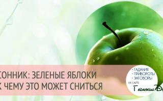 Сонник зеленое яблоко во сне к чему снится зеленое яблоко