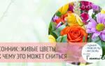 К чему снятся цветы? Сонник – живые цветы во сне предвещают радостные события