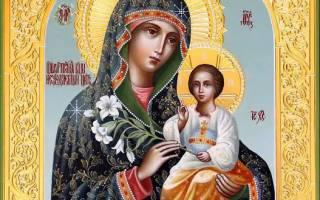 Значение иконы Божией Матери «Неувядаемый цвет»