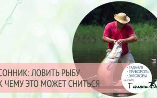 Ловить рыбу во сне мужчине: толкование