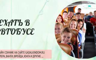 Сонник ехать в автобусе — к чему снится ехать в автобусе во сне?