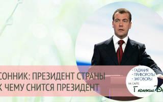 К чему снится Путин (президент, разговаривать, видеть во сне) — ЭТО ХОРОШО! Толкование снов с президентом