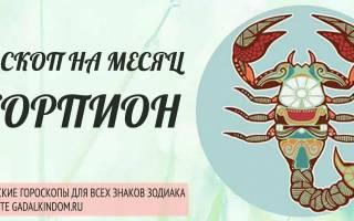 Скорпион: Гороскоп на Ноябрь 2019 для женщины и мужчины