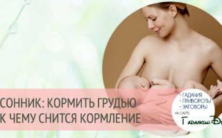 Сонник Кормить грудью ребенка, к чему снится Кормить грудью ребенка во сне видеть