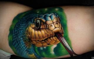 Значение тату змея: все значения татуировок со змеей