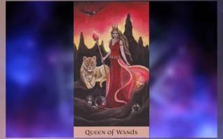 Королева Жезлов: значение карты Таро
