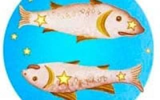 Мужчина Козерог и Женщина Рыбы совместимость в любви
