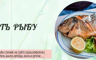 Сонник: есть рыбу