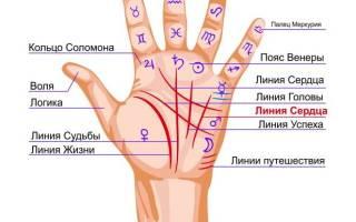 Линии на ладони – значение на левой руке