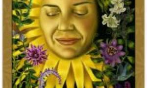 Солнце в сочетании с другими картами Таро: значение 19 аркана в отношениях и любви